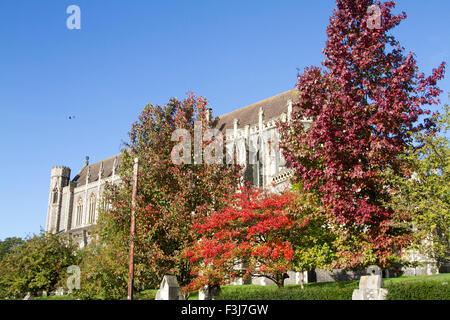Wimbledon London, UK. 8. Oktober 2015. Blätter beginnen sich zu ändern ihre Farbe vor der Sacred Heart Church in - Stockfoto