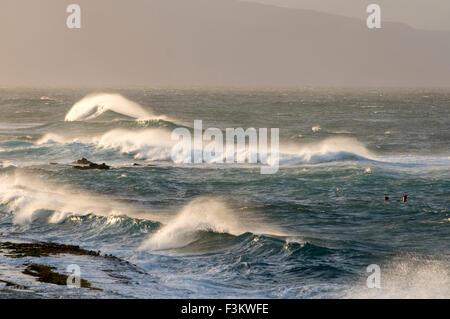 Wawes in Ho'okipa Strand. Maui. Hawaii. Ho'okipa Beach Park gehört zu den Top-Spots für Ozean-Sport und Erholung - Stockfoto
