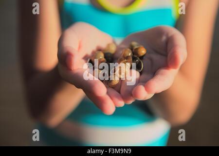 Holding, Nahaufnahme, Ontario, Mädchen, Muschel - Stockfoto