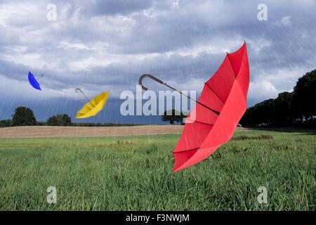 Sonnenschirme im verregneten Landschaft fliegen - Stockfoto