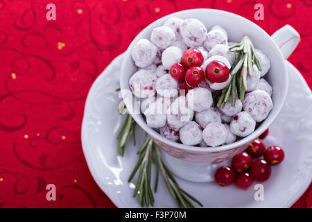 Festliche kandierten Preiselbeeren in einer dekorativen Schale auf rotem Grund - Stockfoto