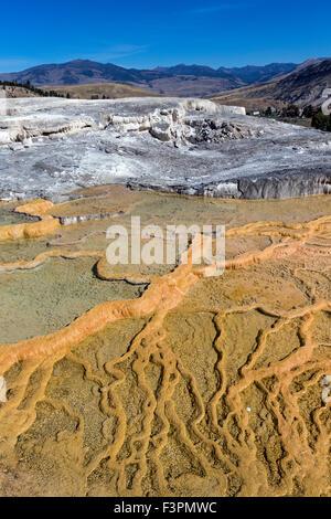 Mammoth Hot Springs; Yellowstone-Nationalpark; Wyoming; USA