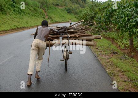Menschen Sie drängen Fahrrad mit Brennholz, Burundi, Afrika - Stockfoto
