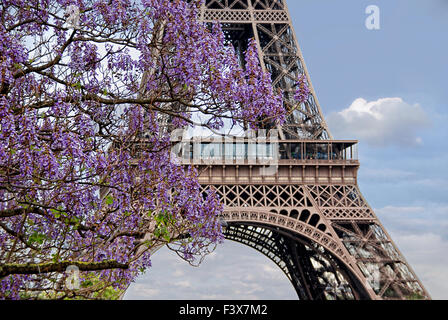 Frühling in Paris - Stockfoto