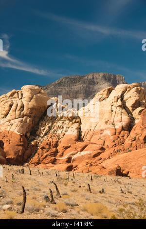 Sandstein-Klippen der Red Rock Canyon National Conservation Area in der Nähe von Las Vegas Nevada Vereinigten Staaten - Stockfoto