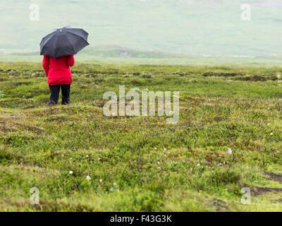 Frau im Regen mit rote Jacke und schwarzen Regenschirm in Island über Moorland Freiland Rückansicht allein zu Fuß - Stockfoto