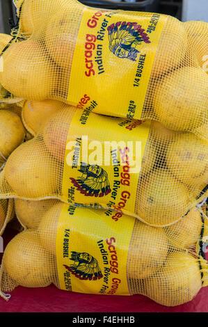 USA, Florida, New Smyrna Beach, Grapefruit zum Verkauf auf Markt. - Stockfoto