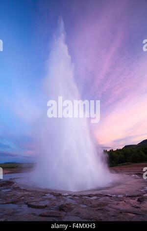 Strokkur Geysir Errupting bei Sonnenuntergang, Geysir, Sudhurland, Island. - Stockfoto