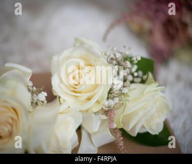 Creme Hochzeit Taste Löcher Trauzeugen Vater der Braut Rosen mit grünem Laub Corsage Mutter der Braut - Stockfoto