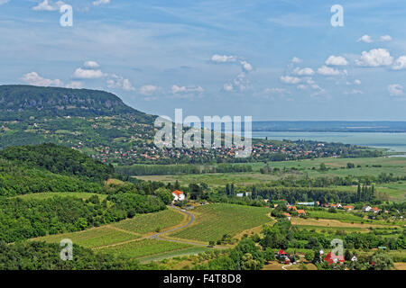 Burg Szigliget, Szigligeti Var, Burgruinen, flacher See, Balaton - Stockfoto