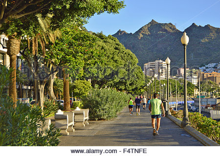 Hafenpromenade mit Anaga-Gebirge im Hintergrund, Santa Cruz De Tenerife Kanarische Inseln - Stockfoto