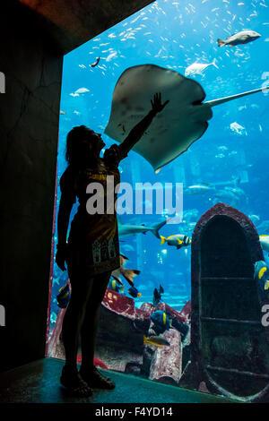 DUBAI, Vereinigte Arabische Emirate - 30 SEPTEMBER: Großes Aquarium im Hotel Atlantis (1.539 Zimmer darunter 166 - Stockfoto