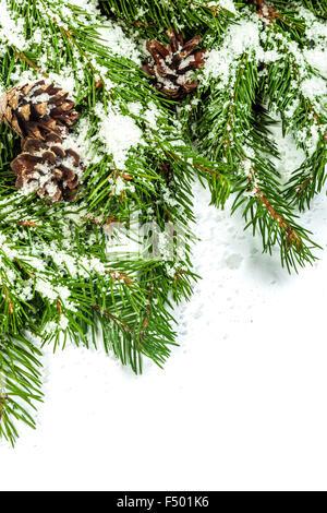 weihnachten dekorationen auf die zweige der tanne. Black Bedroom Furniture Sets. Home Design Ideas