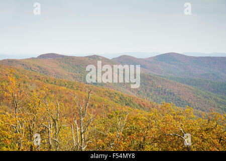 Talimena scenic Byway, die entlang dem Kamm des Berges im Ouacahita National Forest - Stockfoto