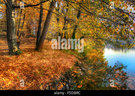 Bunte Blätter auf den Bäumen entlang See im Herbst, HDR-Bild - Stockfoto