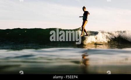 Frau Surfen bei Sonnenuntergang, Malibu, Kalifornien, USA - Stockfoto