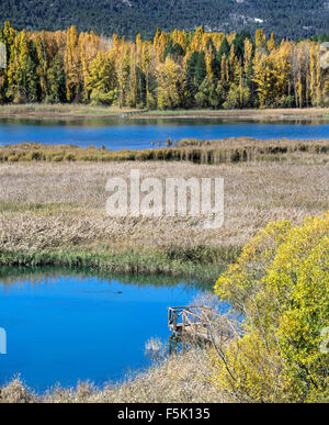 Blick über die Lagune auf Una im Herbst, Serrania de Cuenca, Castilla-la Mancha, Spanien - Stockfoto