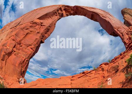 Royal oder Gregg Arch, Navajo Wildlands, Arizona Luckachukai Berge - Stockfoto