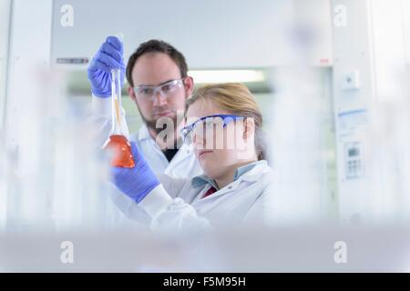 Wissenschaftler untersuchen gefärbte Proben im Prüflabor - Stockfoto