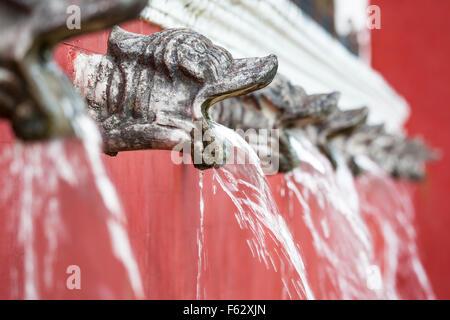 Brunnen auf dem Gelände der Temozon Hacienda in Yucatan, Mexiko. - Stockfoto