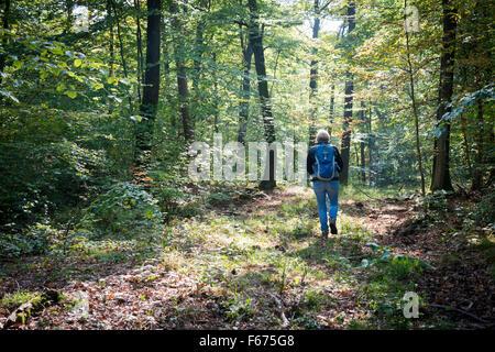 Eine Frau in einem sonnendurchfluteten Wald im Sommer - Stockfoto