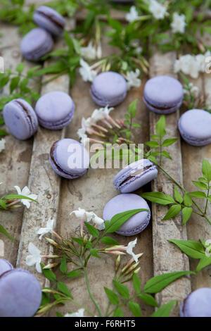 Lavendel & Schokolade Macarons mit Jasminblüten - Stockfoto