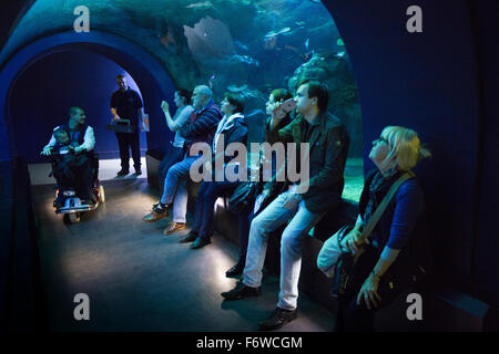 Großbritannien, England, Yorkshire, Hull, The Deep marine Aquarium, Endless Ocean Besucher im Tunnel - Stockfoto