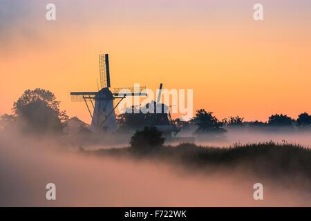 Morning Glory in dem kleinen Dorf Ten Boer in der Provinz Groningen im nördlichen Teil der Niederlande - Stockfoto