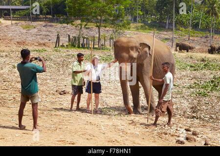 Sri Lanka - Tourist machen ein Bild mit einem Elefanten, Elefanten-Waisenhaus Pinnawela (Sabaragamuwa Provinz von - Stockfoto