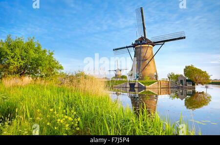 windm hlen in kinderdijk niederlande stockfoto bild 24774535 alamy. Black Bedroom Furniture Sets. Home Design Ideas