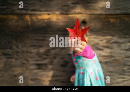 Mädchen, die Blätter vor ihr Gesicht halten - Stockfoto