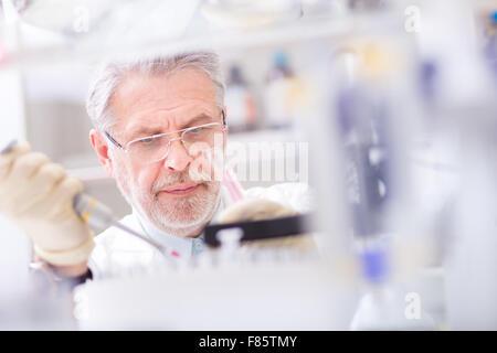 Lebens-Wissenschaftler forschen im Labor. - Stockfoto