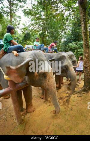 Thailand - Krabi Provinz, Khao Lak Nationalpark, Elefanten warten auf Touristen - Stockfoto