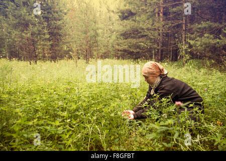 Kaukasische Frau Beerensammeln im Feld