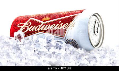 Dose Budweiser Bier auf einem Bett aus Eis über einem weißen Hintergrund - Stockfoto