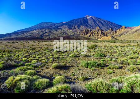 Teide Vulkan Landschaft im Nationalpark auf der Insel Teneriffa in Spanien am Tag - Stockfoto