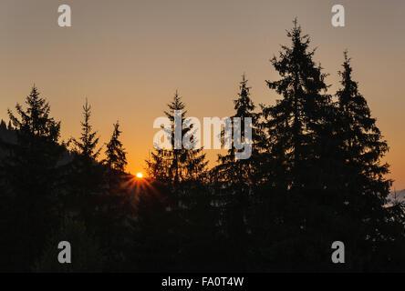 Sonnenaufgang im Gebirge A Sunrise ist in Karpaten - Stockfoto