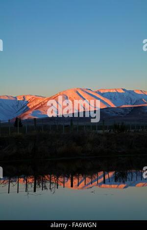 Alpenglühen am Ida Range, Maniototo, Central Otago, Südinsel, Neuseeland - Stockfoto