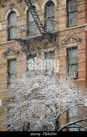 Chelsea Gebäude mit Feuerleiter und Schnee bedeckt Baum, Wintersturm, Manhattan, New York City - Stockfoto