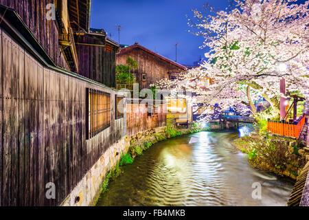 Kyoto, Japan am Fluss Shirakawa im Stadtteil Gion während der Frühjahrssaison Cherry blossom. - Stockfoto
