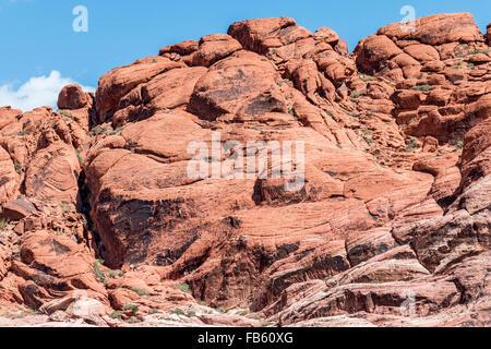 Kletterer skalieren die rote Felsen von Calico-1-Gebiet in der Calico Hills von Red Rock Canyon National Conservation - Stockfoto