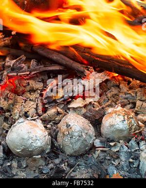 Gebackene Kartoffeln umwickelt mit Alufolie in ein Lagerfeuer rösten. - Stockfoto