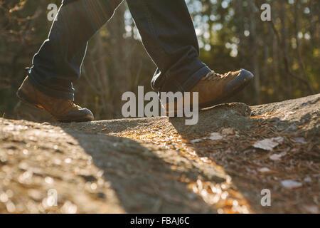 Finnland, ESO, Kvarntrask, niedrige Abschnitt Schuss der junge Mann zu Fuß in Wald - Stockfoto