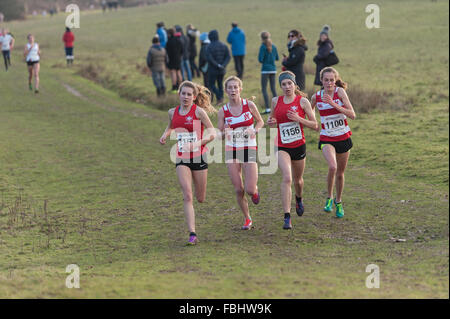 Annual Knole Run Sevenoaks School Kreuz Land Jugend Meile laufen in Teams harte Langstrecken-Rennen - Stockfoto
