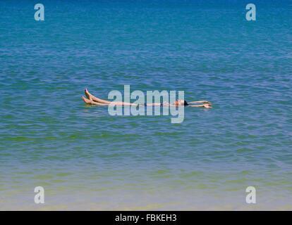 Frau mit Bikini im perfekten blauen farbigen Meerwasser, friedliche und beautful Galapagos-Inseln, Ecuador schweben. - Stockfoto