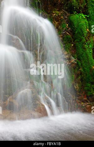 Wasserfall im Regenwald in der Nähe von Port Alice, Nordinsel Vancouver, Vancouver Island, British Columbia, Kanada. - Stockfoto