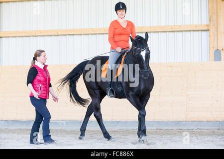 Hanoveranian Pferd. Fahrer in einer Reithalle Reiten einer Volte im Galopp. Deutschland - Stockfoto