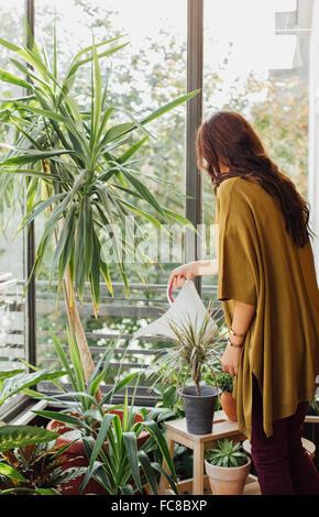 Kaukasische Frau Bewässerung von Topfpflanzen - Stockfoto