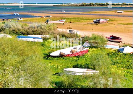 Portugal, Algarve: Bunte Fischerboote liegen in den Sandbänken des Ria Formosa bei Ebbe - Stockfoto