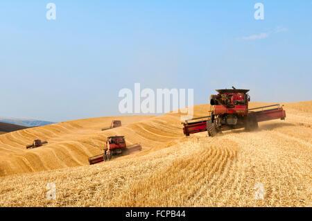 Ein Team von verbindet Auszug abgeernteten Weizenfeld in der Palouse Region Washington - Stockfoto